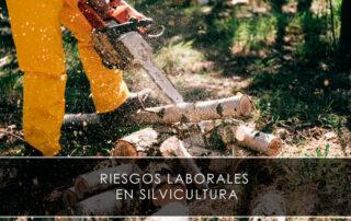 Riesgos laborales en silvicultura - Novagés