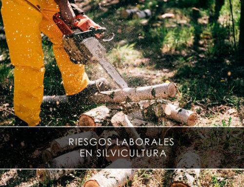 Riesgos laborales en silvicultura